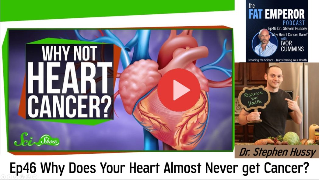 Ep46 Dr. Stephen Hussy on Why is Heart Cancer so Rare? Find out here!
