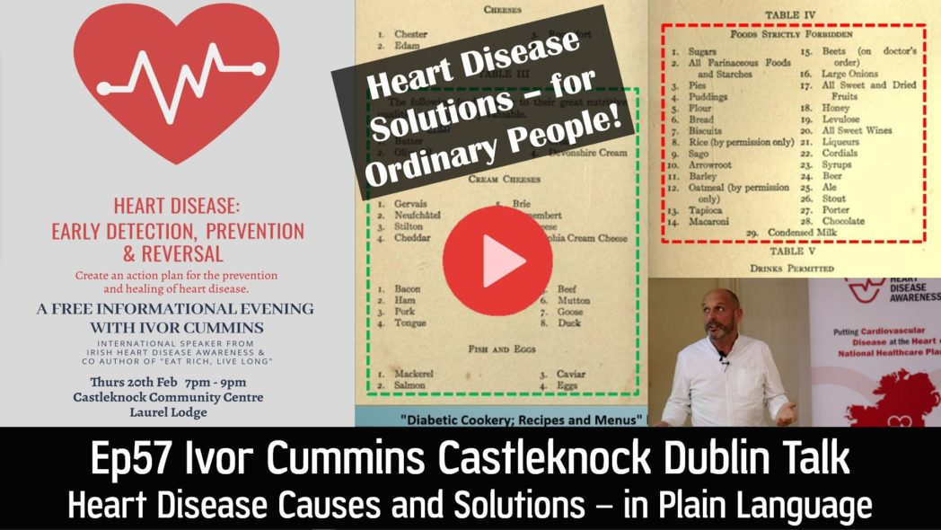 IHDA Ivor Cummins Castleknock Dublin Talk - Heart Disease Causes and Solutions