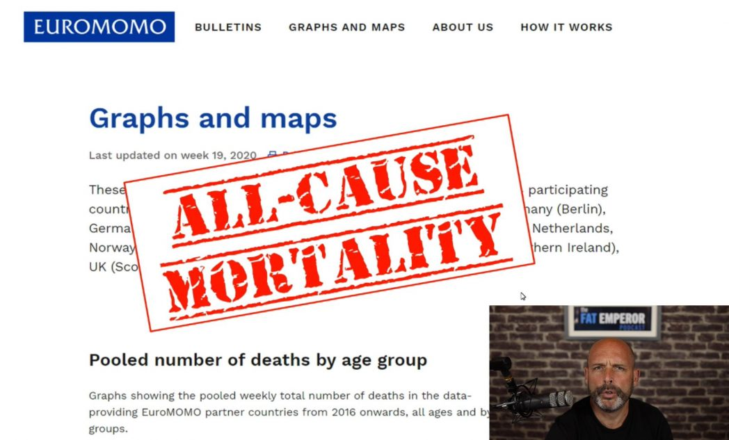 NOT What You May Think - Viral Mortality Comparison 2018 vs 2020